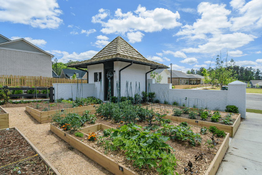 community garden abingdon 55 and older community in hoover al